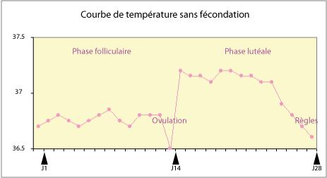 Courbe de température basale